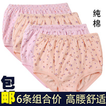6 fitted in the elderly underwear female cotton high waist triangle shorts large cotton loose printing mothers belts