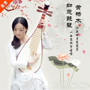 An adult Chinese music beginners practice class Pipa lute instrument students poplar Pipa send nail