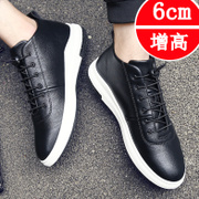 With the new tide winter cashmere shoes Korean youth leather casual shoes men shoes for men 2016 shoes
