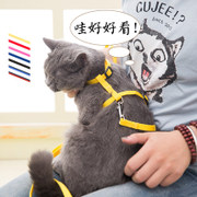 The cat cat slipped from the chain traction rope anti cat cat walking artifact cat cat cat supplies traction rope chain