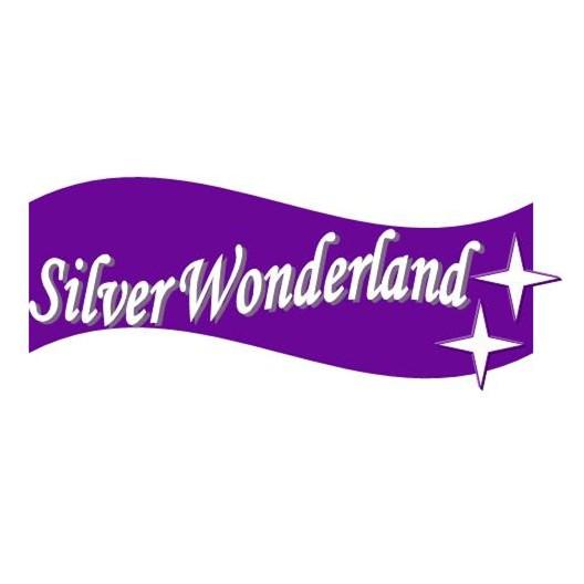 银世Silver Wonderland 原创设计手工银饰