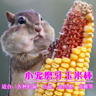 零食山东松鼠仓鼠磨牙天然玉米棒穗皮料龙猫农家宠物磨牙用品用品鳄鱼兔子v零食图片