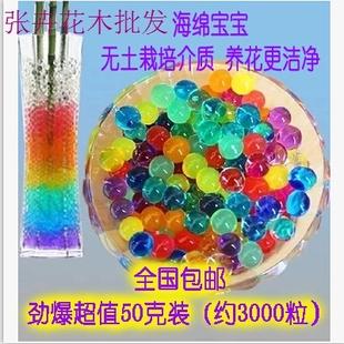 无土栽培彩色水晶泥 海洋动物吸水珠泡大珠 海绵宝宝水晶珠生长球