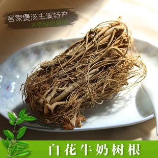 广东客家特产 野生白花牛奶树根 老火靓汤煲汤汤料养生滋补营养品