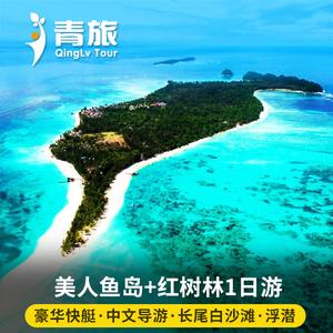 沙巴美人鱼岛一日游亚庇kawa红树林萤火虫马来西亚旅游