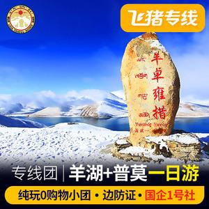 飞猪专线西藏旅游羊卓雍措羊湖一日游拉萨旅游羊湖1日游跟团游