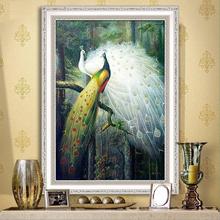 Ручной работы континентальный вход живопись вертикальное исполнение павлин гостиная декоративный живопись магазин идти галерея живая дорога картины животное фреска