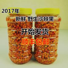 2017 год люй балка гора свежий дикий люй балка песок позвоночник фрукты уксус ива фрукты в продаже 39 юань 1 цзин, единица измерения веса доставка от компании sf express включена