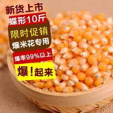 Взрыв цветок специальный кукуруза зерна взрыв цветок сырье новые поступления сейчас в надичии взрыв небольшой кукуруза 10 специальный вес загружен бесплатная доставка