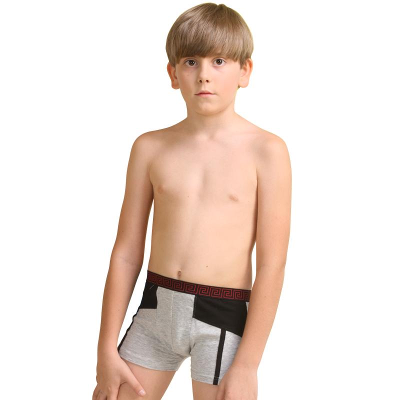 SGD14.24] Caiqiao children cotton underwear boys boys children ...