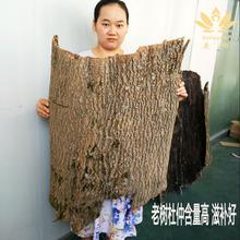 Ду средний кожа чистый дикий идти грубый народные традиционная китайская медицина лесоматериалы пузырь ликер династия цинь хребет ду средний порошок чай 500g грамм