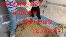 Раковина цемент + желтый песок + фасоль камень / камень сын + искусственный + после продажи = специальность земля теплый находить квартира шанхай и периферия город