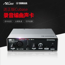 Steinberg yamaha UR12 USB внешний запись компилировать песня звуковая карта компьютер ноутбук звуковая частота интерфейс