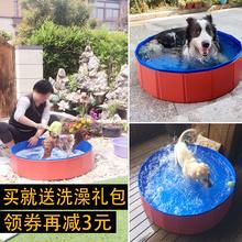 Собака купаться бассейн тедди золото волосы лето домашнее животное складные китти плавательный бассейн ванна ванна крупных собак статьи
