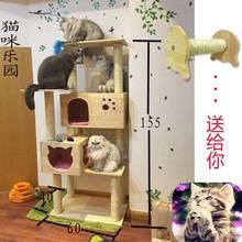 Роскошь дерево кот подъем полка китти статьи кошачий колонка кот дерево кот гнездо дерево кот полка домашнее животное подъем полка продаётся напрямую с завода