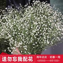 В небе звезда сухие цветы юньнань сухие цветы пакет цветок магазины дом офис комната цветочная композиция diy цветок лесоматериалы стрельба реквизит