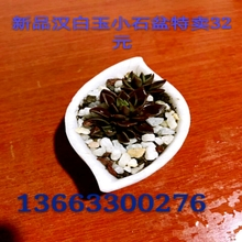 Бутик медный купорос античный камень бассейн белый мрамор камень модельывать карликовое дерево бассейн корейский резьба искусство украшение цветочный горшок нарцисс бассейн