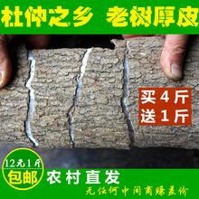 Ду средний кожа чжан мир высокий возраст ду средний дикий старый дерево ду средний толстая кожа может пузырь чай пузырь ликер горшок суп бесплатная доставка 500g