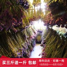 Незабудка сухие цветы пакет юньнань борьба южная сухие цветы база земля выход мягкий наряд чэн установить ваза цветочная композиция лить вешать сухие цветы бесплатная доставка