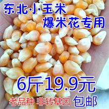Небольшой кукуруза взрыв цветок специальный небольшой кукуруза зерна к северо-востоку разное зерна сухой товары бабочка взрыв кукуруза новые поступления 6 джин пакет mail