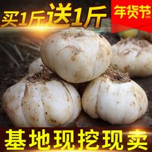 Купить 1 отдавать 1 провинция ганьсу орхидея государственный свежий лили 500g*2 специальная марка сельское хозяйство с дома свойство специальный свойство еда использование свежий сладкий лили