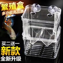 Павлин рыба сложный колонизация коробка рыба рассада люк устройство цилиндр иностранных рыба изоляция чистый свойство дом борьба аквариум акрил мать xl