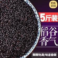 Сто вкус хорошо поле 2017 сельское хозяйство с дома свойство черный айва японская чисто черный рис природный разное зерна масса 5 цзин, единица измерения веса пять долина разное зерна бесплатная доставка
