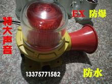 LED взрывозащищенный звук и свет сигнализация AC220V негабаритный звук сигнализация DC24V/36V взрывозащищенный предупреждение свет