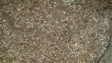 Соломенный обработка машинально мельница земля дыня лист отруби земля дыня саженец порошок земля дыня стебель лист отруби красный сладкий картофель соломенный порошок 250g