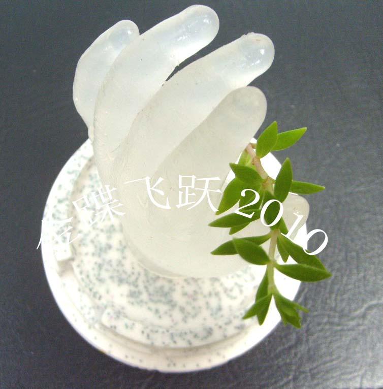 【杨瀛铸造石膏研究中心】_带你