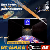 The rich-year shrimp egg incubator 滷 and insect hatching shallow plate simple incubator efficiently easy to collect peacock fry openings