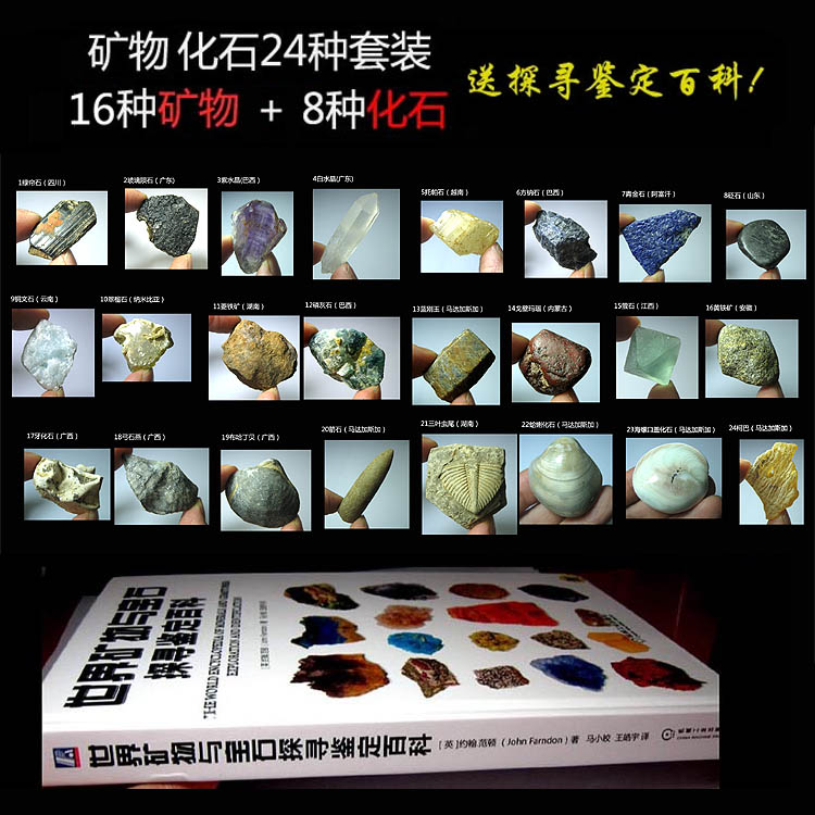 Mineral 巖 24 kinds of MI6605 x 16 kinds of ore  8 kinds of fossils  8 kinds of fossils  XR