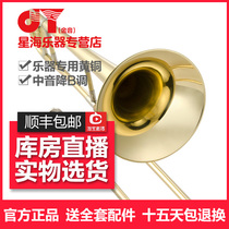 Xinghai Gold JYTB-E100 Midsonic Drop B Pull Pipe Long Painted Gold Long Instrument