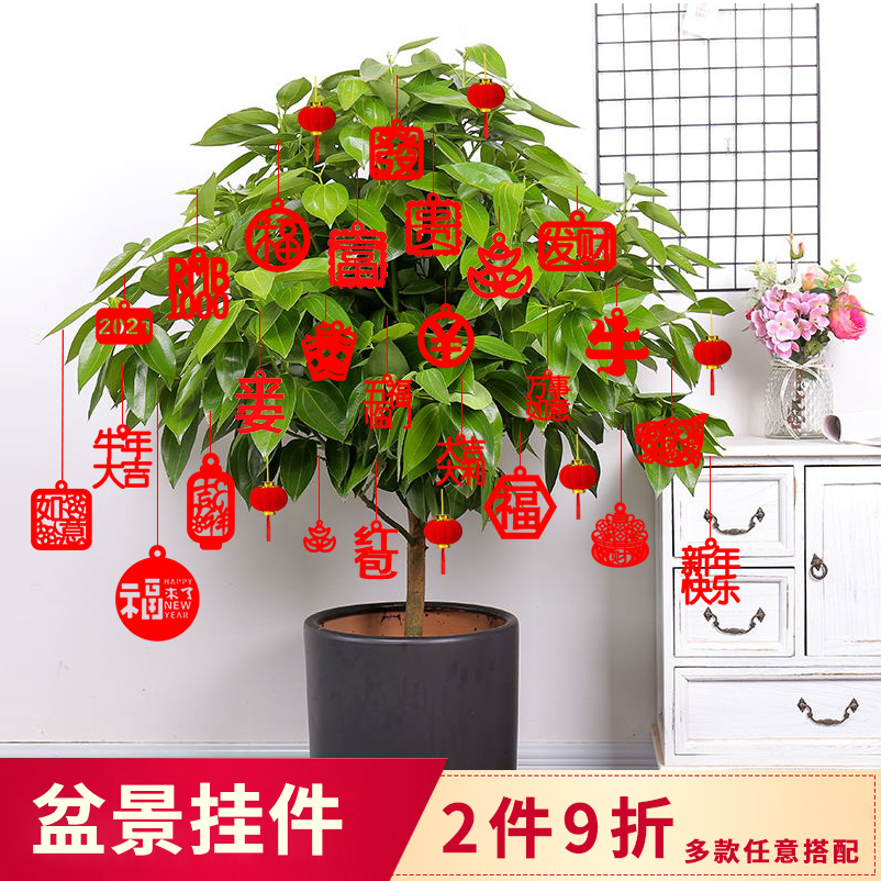 Joe moved the joy of decorating the building moving decoration supplies new home bonsai pendants New Years small lantern ornaments