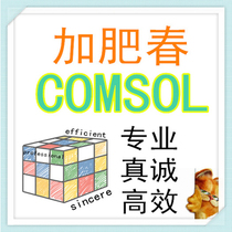 ) Comsol to do technical support for the generation of Fat spring)