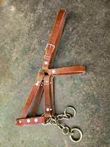 The bridle is rugged and adjustable in size for a wide range of horses