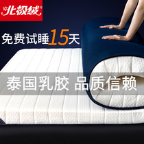 Arctic velvet mattress winter latex padded padded single dormitory bed mattress warm mattress tatami sponge mat