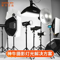 Shen Niu Photography light 400W suit studio light Studio fill light flash Portrait clothing SK II photo