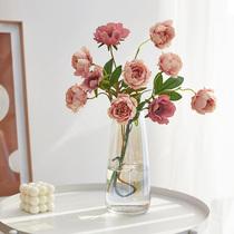 北欧创意简约ins 风玻璃花瓶水培透明网红客厅插花瓶干燥花装饰摆饰