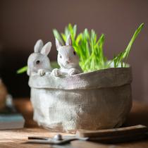 掬涵 口袋小兔子花器多肉花盆萌可爱装饰桌面摆件创意礼物品阳臺