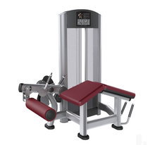 Gym Commercial Thigh flexor trainer crouching stock two-head trainer