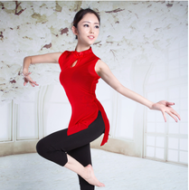 Classical dance yarn Elastic top Ballet Practice suit adult female gymnastics clothing dance clothing mesh yarn Base training suit