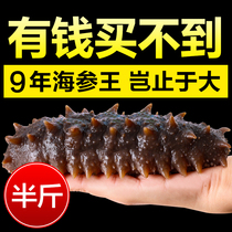 9 years of wild sea cucumber dried goods half a pound old fisherman dried Dalian sea cucumber gift Box Nine years sea seepage Liao Ginseng Ginseng