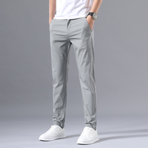Spring and summer new ice silk thin casual pants mens business simple Korean version of the trend of high-end elastic versatile mens trousers