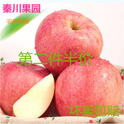 Qinchuan orchard 16 years fresh red apple Fuji Fuji 85 Shaanxi red apple fruit shipping 10 pounds of sweet and juicy