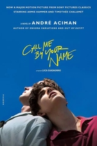 Baidu Cloud Please call me in your name I by Your name complete Pure Love movie
