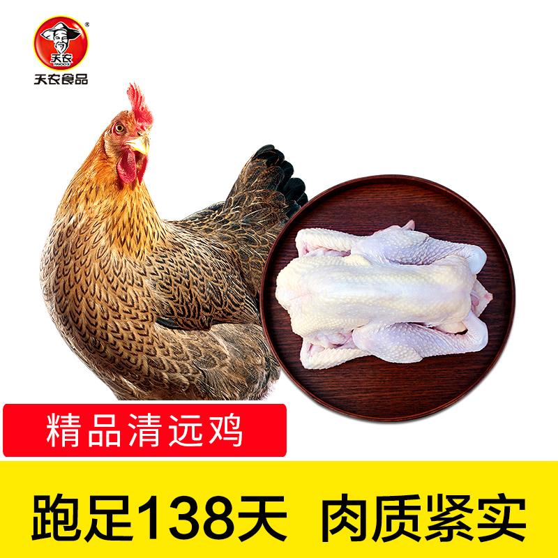 【天农】 农家散养清远鸡土鸡走地鸡精品鸡 800g
