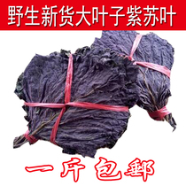 Drying new goods purple leaves to fishy burning fish and shrimp crab purple dried spices chinese herbal medicine Bulk 500g