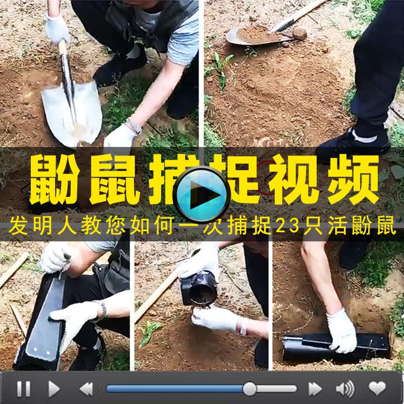 鼢 mouse catcher home high-efficiency fully automatic mouse Tyrone live catcher to pick up the hole-type bamboo mousetrap