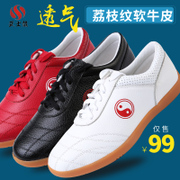 Wu Shilong Tai Chi soft leather shoes Dichotomanthes end practice tai chi kung fu shoes female Wushu Kungfu shoes shoes four